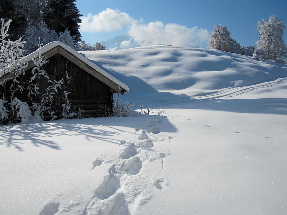 Schneeschuh-Tour Eckbauer